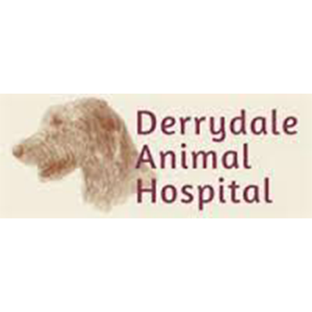derry dale animal hospital
